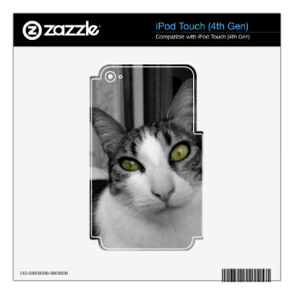 Foto blanca negra del gato iPod touch 4G skins