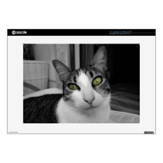 Foto blanca negra del gato skins para portátiles