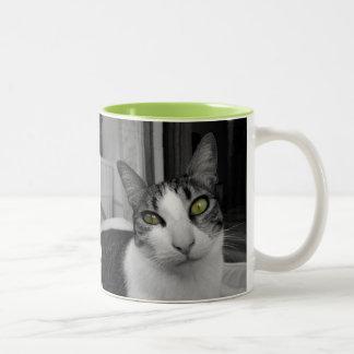 Foto blanca negra del gato taza de dos tonos