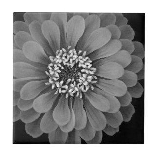 Foto blanco y negro de la flor azulejo cuadrado pequeño