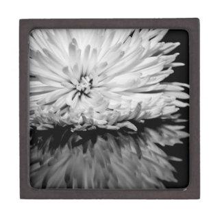 Foto blanco y negro de la flor cajas de joyas de calidad