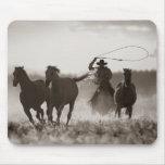 Foto blanco y negro de los caballos de un Lassoing Alfombrilla De Ratón