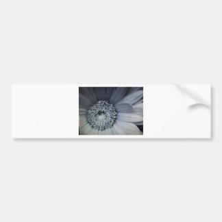 foto blanco y negro de una flor pegatina para auto