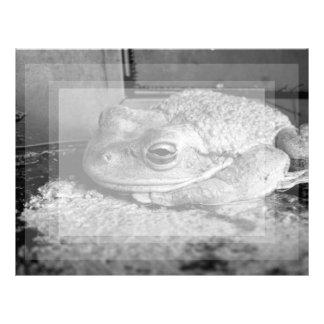 Foto blanco y negro de una rana en un travesaño co plantilla de membrete
