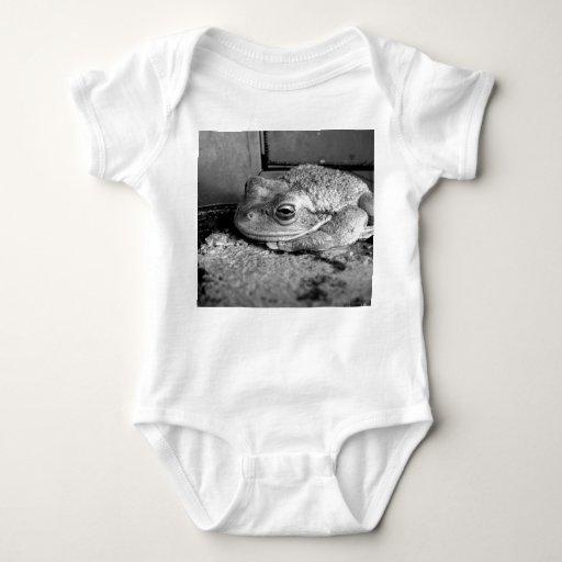 Foto blanco y negro de una rana en un travesaño tshirts