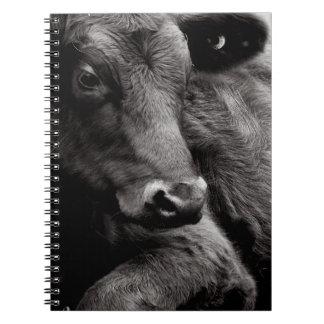 Foto blanco y negro del buey negro de Angus Libreta Espiral