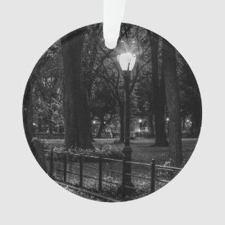 Foto blanco y negro del paisaje del Central Park
