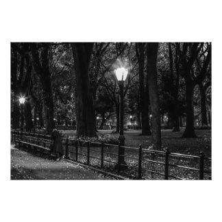 Foto blanco y negro del paisaje del Central Park Cojinete