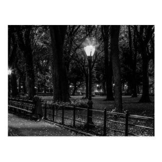 Foto blanco y negro del paisaje del Central Park Postales