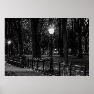 Foto blanco y negro del paisaje del Central Park Póster