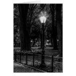 Foto blanco y negro del paisaje del Central Park Tarjeta De Felicitación