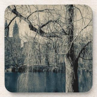 Foto blanco y negro del paisaje posavasos