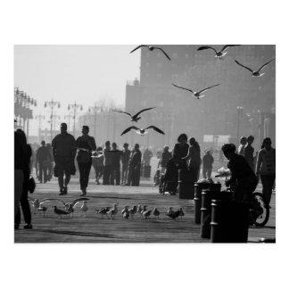Foto blanco y negro del paseo marítimo de Coney Is Tarjetas Postales