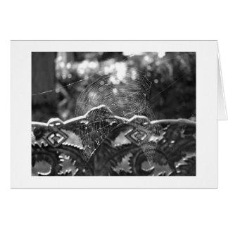 Foto blanco y negro del Web de araña Tarjeta De Felicitación