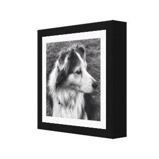 Foto blanco y negro intrépida de Instagram Impresiones En Lona Estiradas