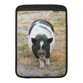 Foto blanco y negro linda del cerdo de la barriga fundas para macbook air