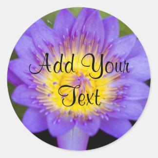 Foto brillante de la floración del lirio de agua pegatina redonda