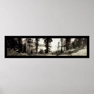 Foto caida 1906 del lago leaf póster
