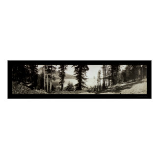 Foto caida 1906 del lago leaf posters