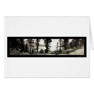 Foto caida 1906 del lago leaf tarjeta de felicitación