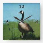 Foto canadiense de los gansos reloj de pared