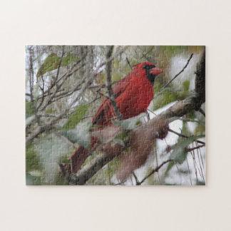 Foto cardinal agradable puzzles con fotos