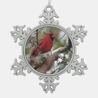 Foto cardinal del personalizar Niza Adorno