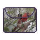 Foto cardinal del personalizar Niza Fundas Macbook Pro