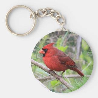 Foto cardinal septentrional llavero redondo tipo pin