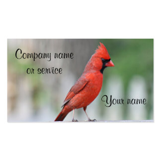 Foto cardinal tarjetas de visita