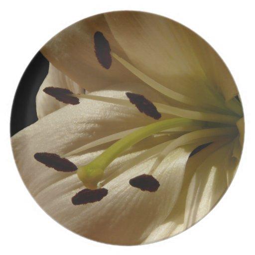 Foto color crema de la flor del lirio plato para fiesta
