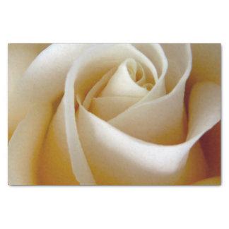 Foto color de rosa poner crema del boda papel de seda pequeño