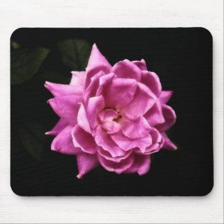Foto color de rosa rosada elegante alfombrilla de ratón