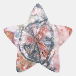 Foto colorida de madera aterrorizada calcomanías forma de estrella