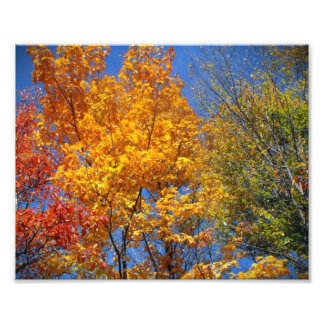 Foto colorida del paisaje de la naturaleza de las