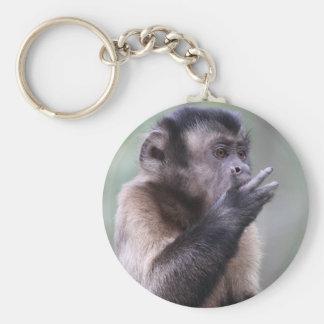 Foto copetuda del mono del capuchón llavero redondo tipo pin