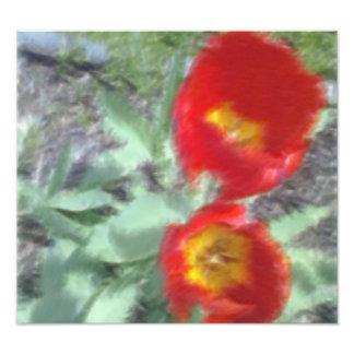 Foto corregida de la flor fotografía