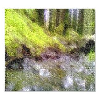 Foto corregida del bosque cojinete