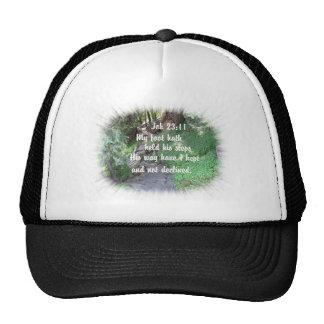 Foto cristiana de la naturaleza del verso de la bi gorras de camionero