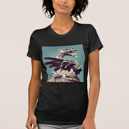 Foto cuadrada - dragón camisetas