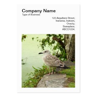 Foto cuadrada (v3) - gaviota femenina tarjetas de visita grandes