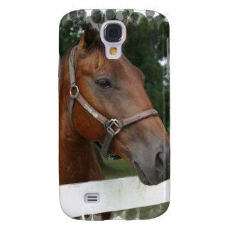 Foto cuarta del caballo