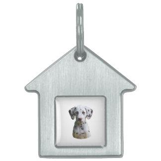 Foto dálmata del perro de perrito placa de nombre de mascota