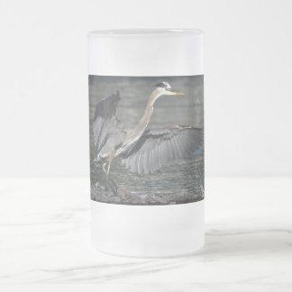 Foto de aterrizaje 3 del pájaro de la fauna de la taza de cristal