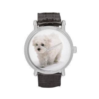 Foto de Bichon Frise Relojes De Mano