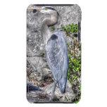Foto de Birdlover de la fauna de la garza de gran  iPod Touch Cobertura