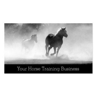 Foto de caballos corrientes - instructor - tarjeta tarjetas de visita
