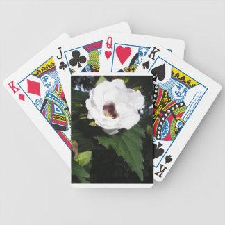 Foto de color de la flor blanca baraja cartas de poker