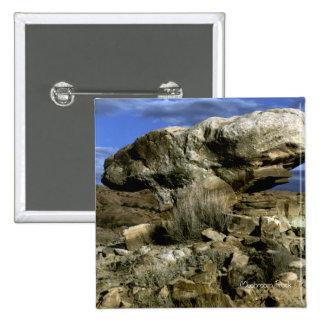 Foto de color de la roca de la seta pins