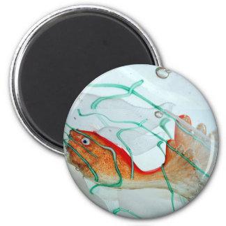 Foto de cristal del pisapapeles del arte de los pe imán redondo 5 cm